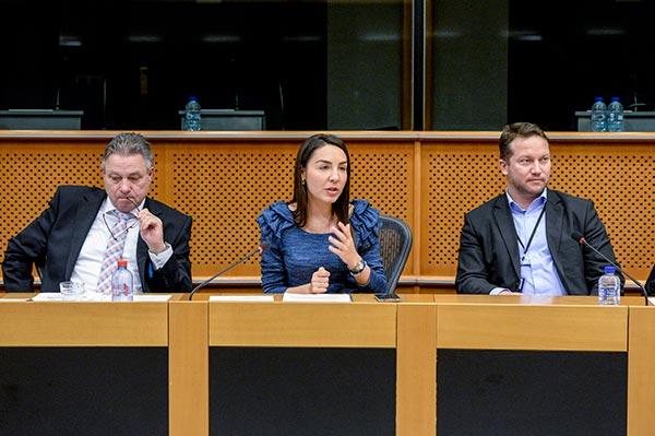 Health Tourism Roundtable Discussion Eu Parliament